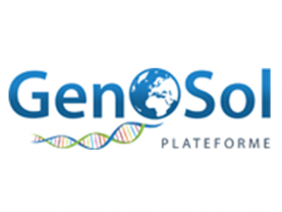 GenoSol